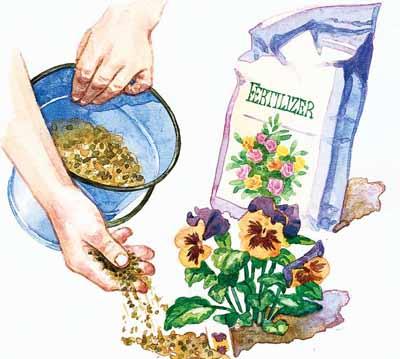 Example Organic Fertilizer a Fertilizer is Any Organic or