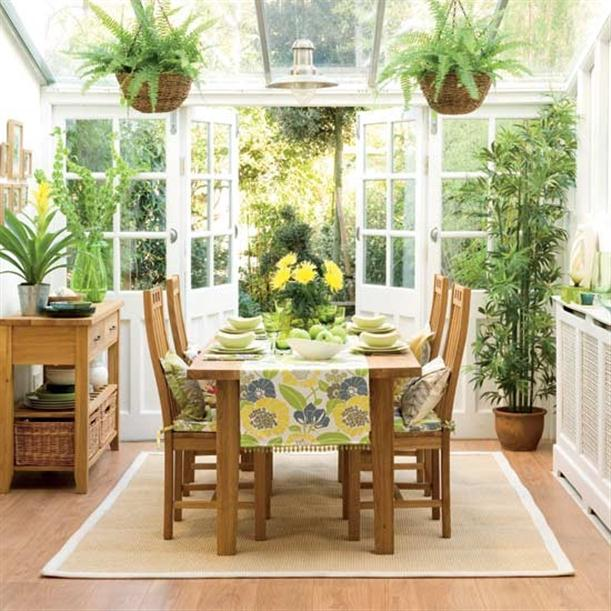 Practical ways to look after house plants impressions - Plants for every room in your home extra comfort and health ...