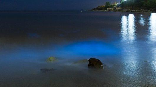 Malabar beach - 2