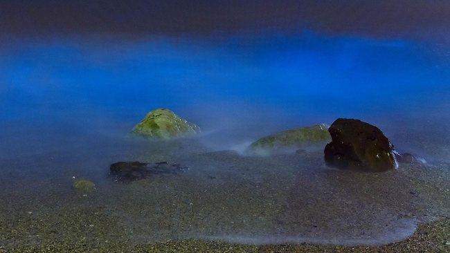 Malabar beach - 3