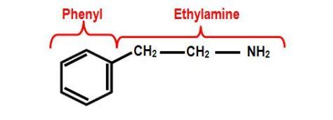 β- Phenylethylamine