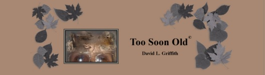 Too Soon Old by David L. Griffith