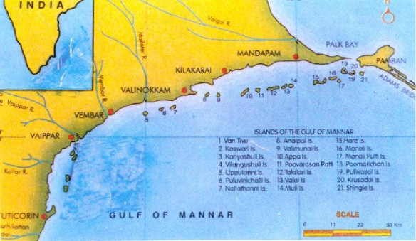 Indian Islands in the Gulf of Mannar.