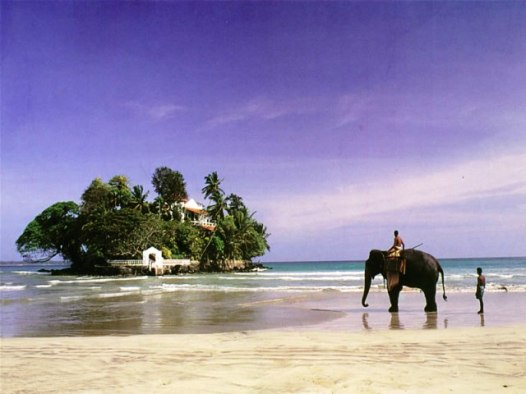 Tabrobane Island