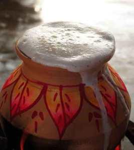 Thai Pongal - Boiling milk