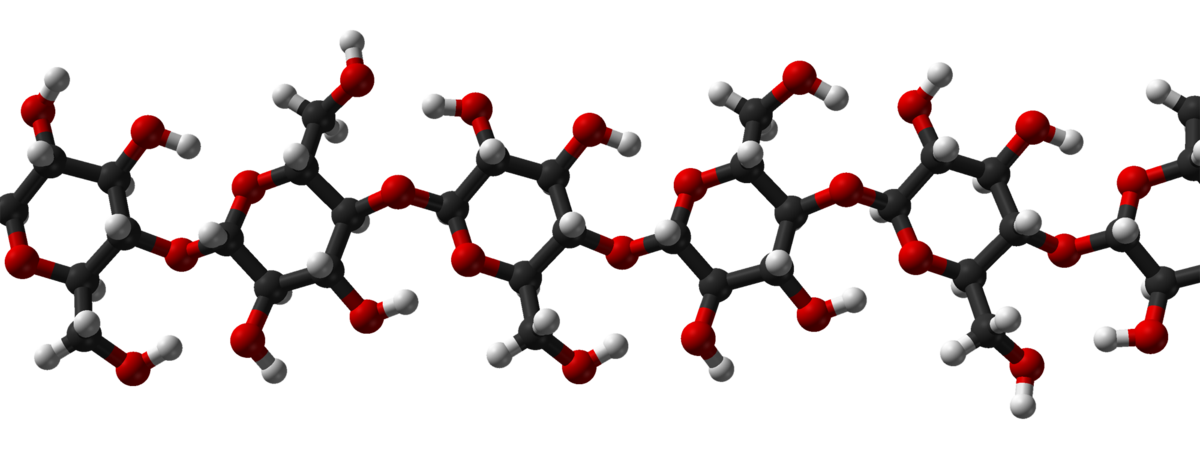3D structure of cellulose, a beta-glucan polysaccharide. (Autho - Ben Mills)