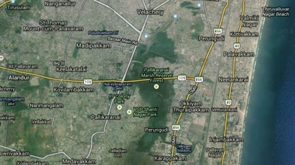 My home in Jalladianpet is just 2.5 miles (4 km) from the Pallikaranai marsh.