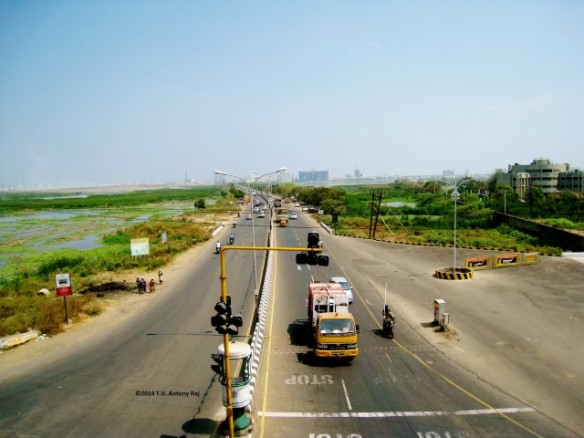 Road connecting old Mahabhalipuram Road (OMR) and Pallavaram over Pallikaranai Marshland, Chennai, (Photo: T.V. Antony Raj)