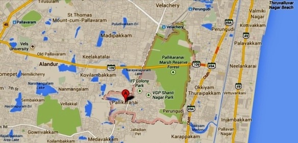 Pallikaranai Marsh Reserve  showing the road connecting old Mahabhalipuram Road (OMR) and Pallavaram that bisects the marsh