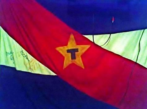 Tupamaros flag - 2
