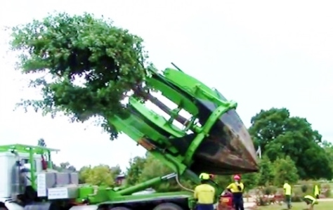 Relocating a full grown tree in minutes (Source: pcbheaven.com)