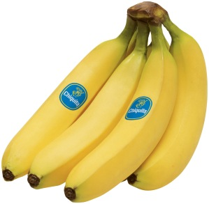 Bananas (Source: southernstudies.org)