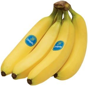 Bananas (Source: southernstudies.org)