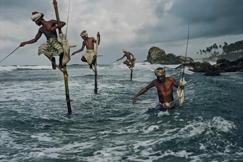 Stilts or Pole fishermen, Sri Lanka (Source: agmisgpn.org))