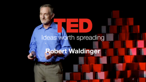 Robert Waldinger, Ted Talk