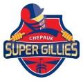Chepauk Super Gillies 120x117